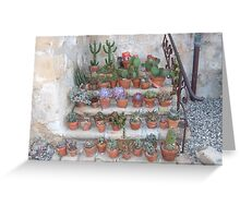 Cactus Garden, Mission, Santa Barbara Greeting Card