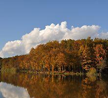 Bukovniško Lake - Slovenia by bugevans