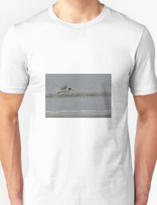 Crested Tern Unisex T-Shirt