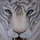 Face of a White Tiger by Tatiana Mavric