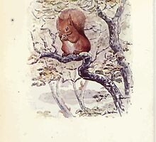 The Tale of Squirrel Nutkin Beatrix Potter 1903 0010 A Story for Noah by wetdryvac