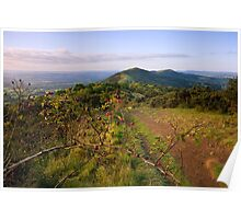 Malvern Hills : Autumn Berries Poster