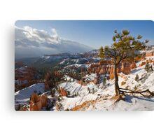 Bryce Canyon snowscape Canvas Print