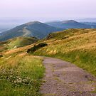 Malvern Hills: Going Down by Angie Latham