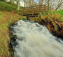 Spillway Slide by Jamie  Green