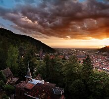 Heidelberg - The Big Picture by Michael Breitung