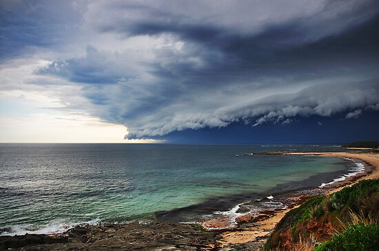 """Mega Beast,"" Cape Paterson by Steph Enbom"