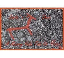 Santa´s Deer for Christmas Photographic Print