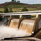 Scrivener Dam 1 by Werner Padarin