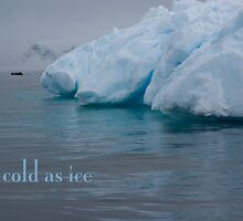 Ice by Rosie Appleton
