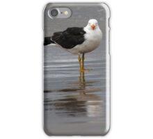Pacific Gull iPhone Case/Skin