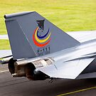 F111 - 1973 to 2010 by Stecar