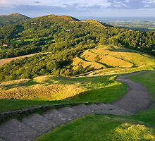 Malvern Hills : curving down by Angie Latham