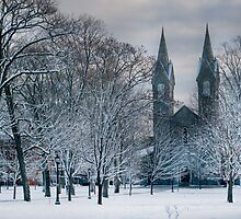 Bowdoin Campus in the Snow by gwynf