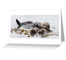 Fluffy Sea Otter Greeting Card