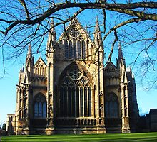 Lincoln Cathedral by Peter Reid