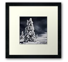White Ink Framed Print