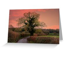 Taking the Scenic Route  Greeting Card