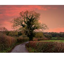 Taking the Scenic Route  Photographic Print