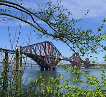 The Forth Rail Bridge by Tom Gomez