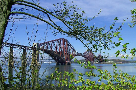 The Forth Rail Bridge by Tom Gomez