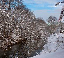 River Dearne Snow by picturistic