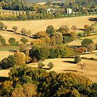 Fall Colors of Umbria-Amelia, Italy by Deborah Downes