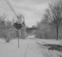 Dead End Winter by TravisLaurence