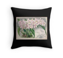 Iconagraphy of Orchids Iconographie des Orchidées Jean Jules Linden V4 1888 0146 Throw Pillow