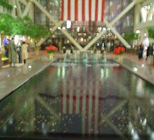 Reflecting America by TravisLaurence