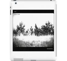 The Dodos - No Color iPad Case/Skin