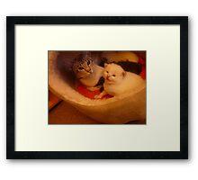 nala & her kittens Framed Print