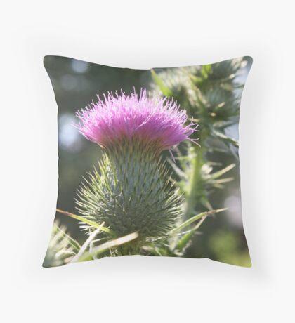 Summer Thistle Throw Pillow