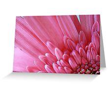 Pink Flower Petals Greeting Card