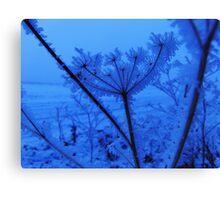 Winter 101 Canvas Print