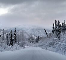 Trip into Winter by May-Le Ng