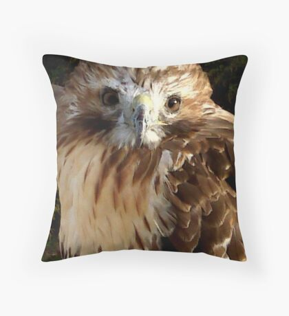 Red Tail Hawk 2 Throw Pillow