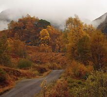 Autumn colours in Glen Nevis. by John Cameron