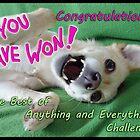 Winner Banner by KanaShow