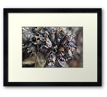 Bouquet of Fairy  for Christmas Framed Print