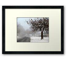 Snowy suburbia Framed Print