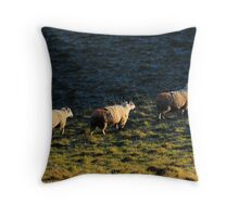 Three Sheep Walking Throw Pillow