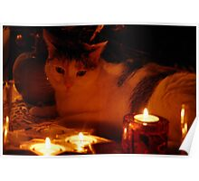 Candlelight - Zippy  Poster