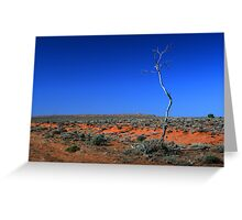 Outback - Lone tree in the desert Greeting Card