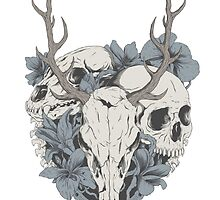 Skulls & flowers by allanohr