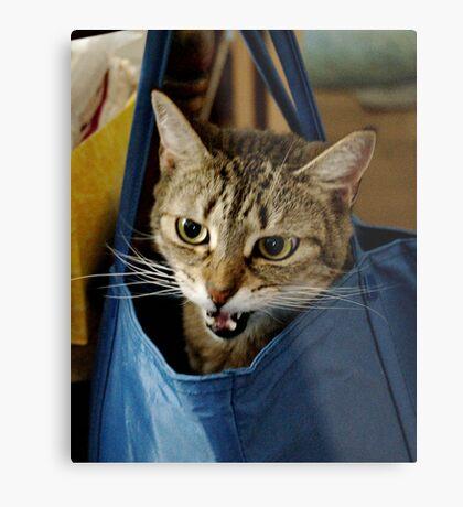Bag it, Dano Metal Print