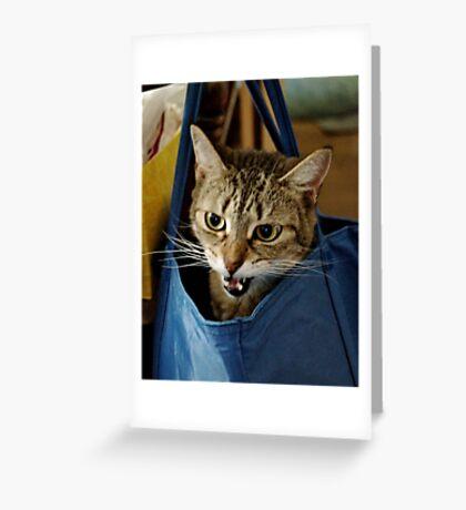 Bag it, Dano Greeting Card