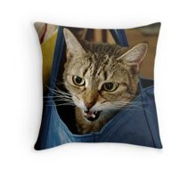 Bag it, Dano Throw Pillow