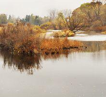 Huron River in November by enchantedImages