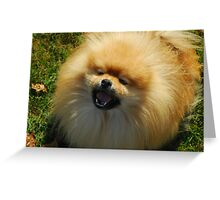 His Sunny Smile....Moxie Greeting Card